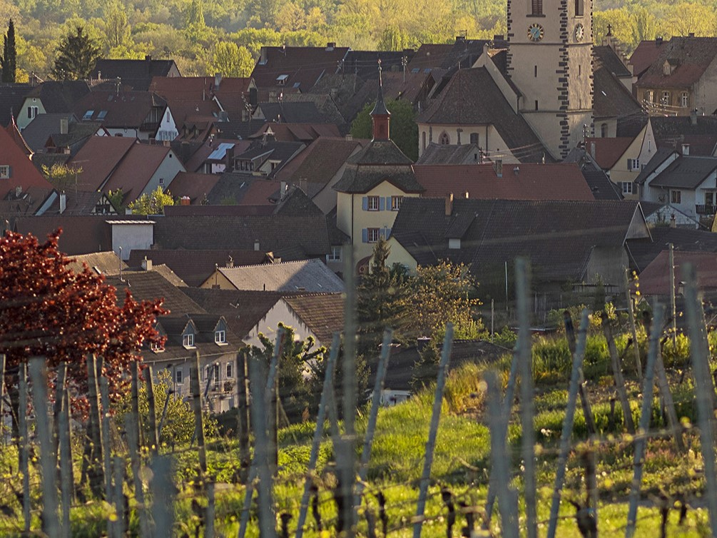 Burkheim_100414_AF_124.1
